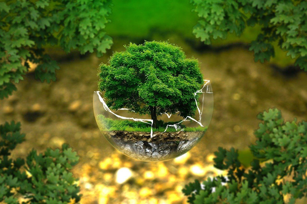 Bio Green. Und es wächst.. Versprochen!